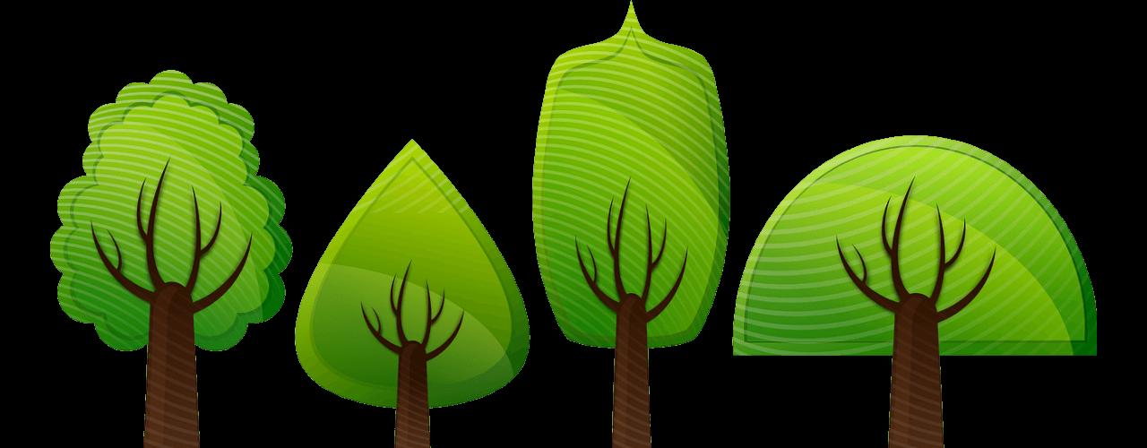 Lehtipuut